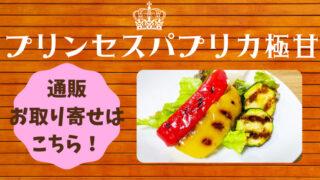 青空レストラン プリンセスパプリカ 通販